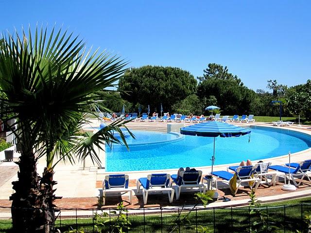 IMG_2524 Pool m palme